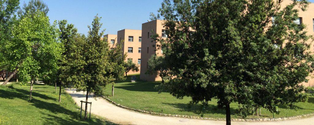 immagine campus di Chieti